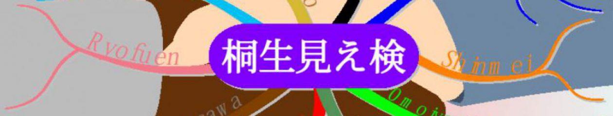 桐生見える事例検討会(桐生見え検)